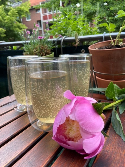 Lavendel-Limonade selbstgemacht